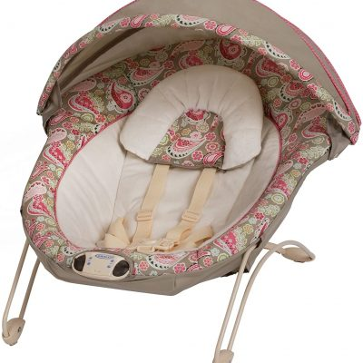 Graco Simple Snuggle Bouncer